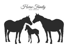 Silhouette Of Horses Family Is...