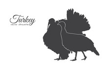 Silhouette Of Couple Turkeys I...