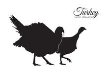 Vector Illustration: Silhouette Of Couple Turkeys