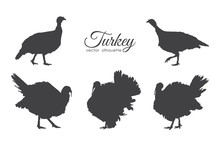 Set Of Turkeys Silhouette Isol...