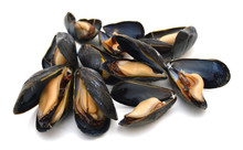 Group Of Boiled Mussels In She...