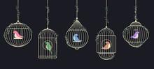 Birds In Golden Cages