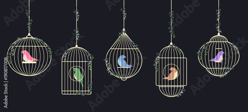 Birds in golden cages Canvas Print