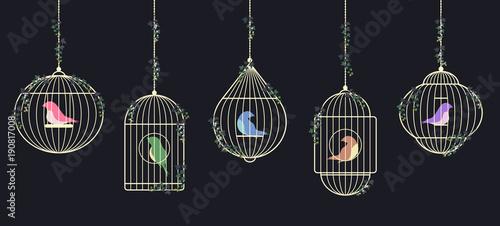 Valokuvatapetti Birds in golden cages
