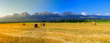 Hay On The Field In Summer Sunset With Mountains Background