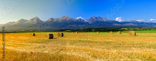 Cadres-photo bureau Miel Hay on the field in summer sunset with mountains background