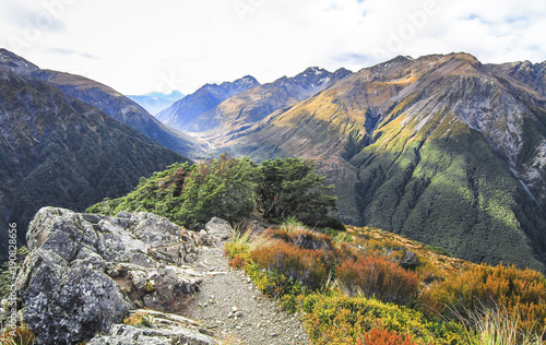 Looking east from the trail to Avalanche Peak in Arthur's Pass National Park, New Zealand Wallpaper Mural