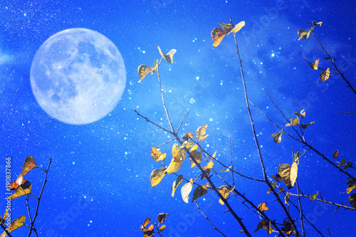 surrealistyczny-fantazi-pojecie-ksiezyc-w-pelni-z-gwiazdami-polyskuje-w-nocnych-nieb-tlo