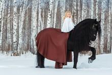 Little Blonde Girl Riding A Friesean Horse