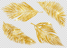 Gold Tropical Leaves On Transp...