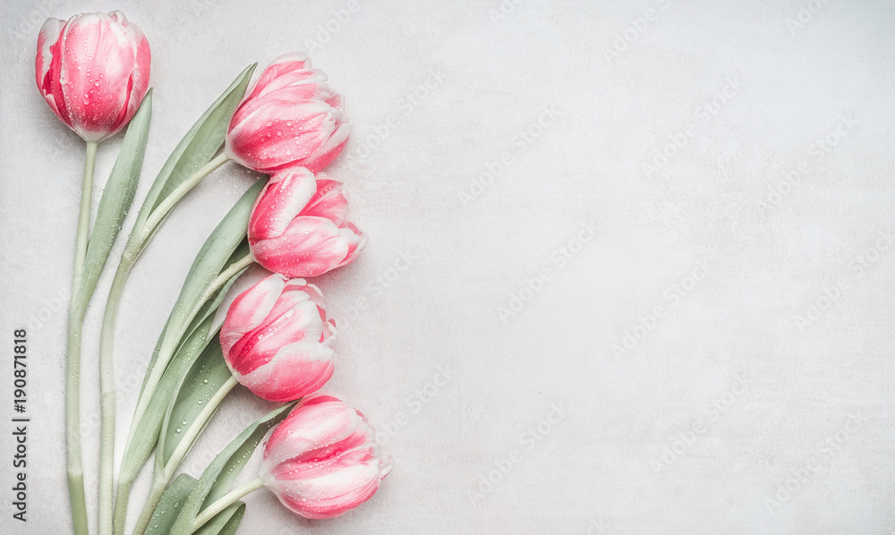 Lovely pastel pink tulips bunch, floral border at light background, top view. Layout for springtime holidays. Mother day greeting card