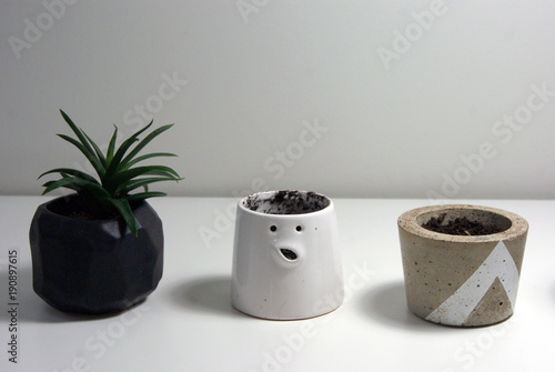 Adobe Stock : little flower pots - startupinsights.org