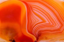Macro Mineral Orange Agate In ...