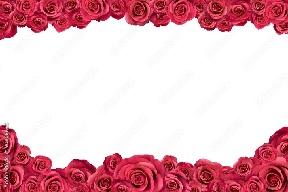 Irregular frame made of pink roses. Isolated on white.