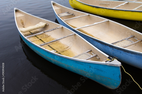 Photo  Row of Canoes Moored