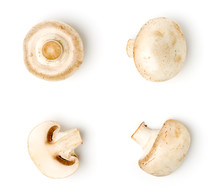 Champignons On White Background, Different Kinds.