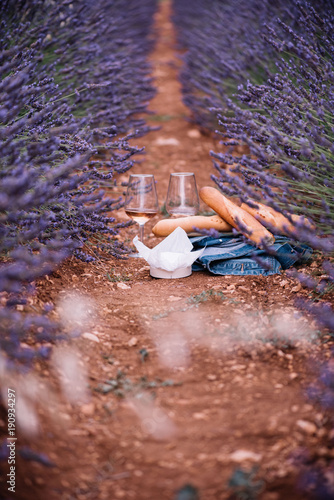 Delicious fresh rose wine, soft tender camembert cheese, two freshly baked baguettes and a denim jacket. Summer picnic on a blossoming lavender field among blooming lavender, Provence, south France