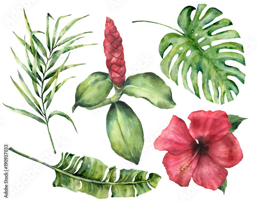 Watercolor tropical flowers and leaves Canvas Print