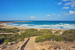 Cyprus - Mediterranean Sea coast. Lara Beach