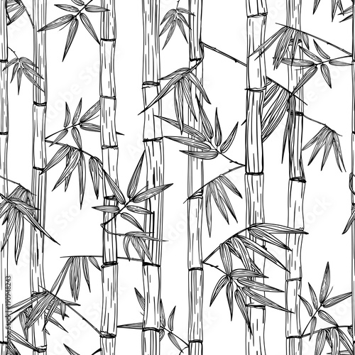 wektorowy-bezszwowy-bambusowy-lasu-wzor-czarno-biale-recznie-rysowane-szkic-tlo-projektowanie-modnego-druku-tekstylnego-azj