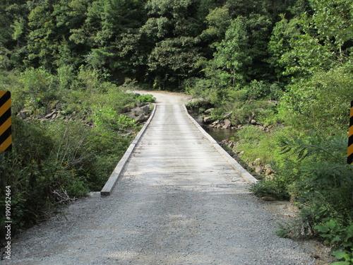 Tuinposter Weg in bos catoosa bridge