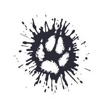 Predator Paw Print Among The Mud Splashes.