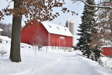Snowy Road To The Barn