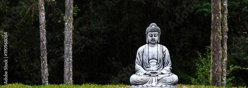 Tuinposter Boeddha Estátua de Buda.