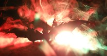 Dragons  Battle Scene. 2 Dragon Prepare To Fight . Rotating Ground With Foggy Back Light Toned.