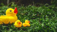 Yellow Rubber Duck And The Duc...
