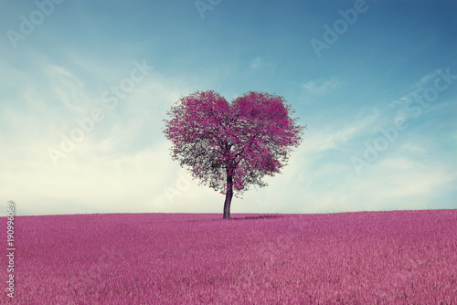 Poster Printemps Abstract field with heart shape tree under blue sky. Beauty nature. Valentine concept background