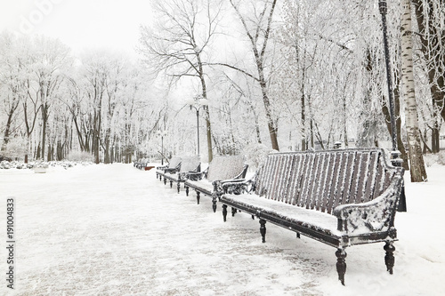 Fotografie, Obraz  Bench in the park in icy cold frost.