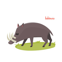 Vector Cute Babirusa In Cartoon Style Isolated On White Background.