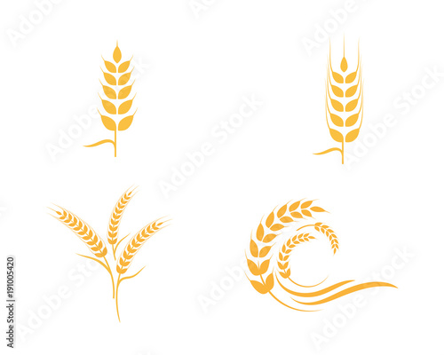 Agriculture wheat Logo Template Canvas-taulu