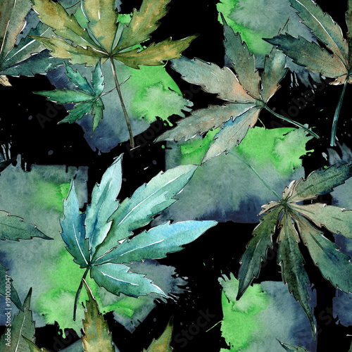 Poster  Cannabis leaves pattern in a watercolor style