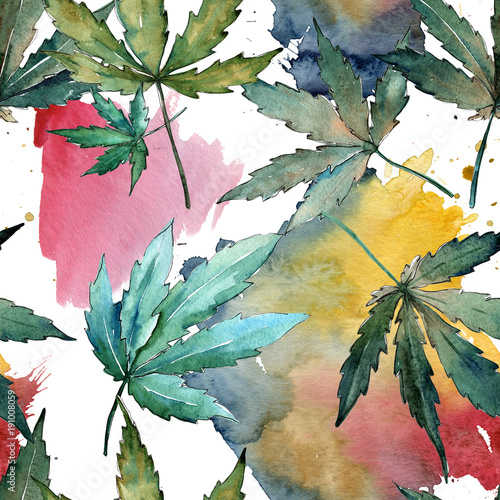 Fotografia  Cannabis leaves pattern in a watercolor style