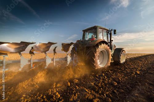 Pinturas sobre lienzo  Tractor plowing fields -preparing land for sowing in autumn