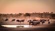 canvas print picture - Aufnahme einer Herde Gnus (Blue Wildebeest) an einer Wasserstelle in der Dämmerung