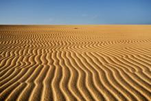 Sand Dunes Of Corralejo In Fue...