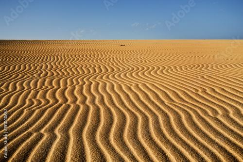 sand dunes of Corralejo in Fuerteventura, Spain