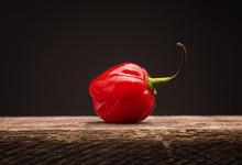 Hot And Spicy Habanero Chili