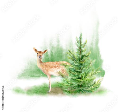 akwarela-krajobraz-lasu-jelen-na-trawniku