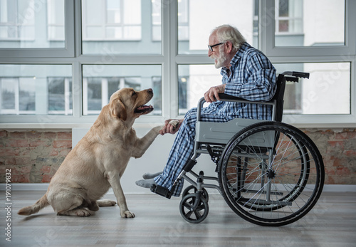 Fotografía  Peaceful old man looking at his hound and holding the paw of it