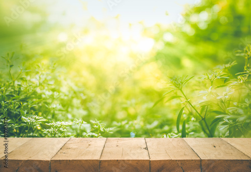 Aluminium Prints Garden Wood table top on blur of fresh green abstract from garden backgrounds.For montage product display or key visual layout