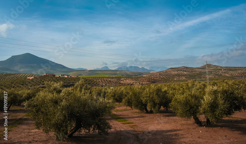Fotobehang Diepbruine Picturesque landscape in province of Jaen in Spain