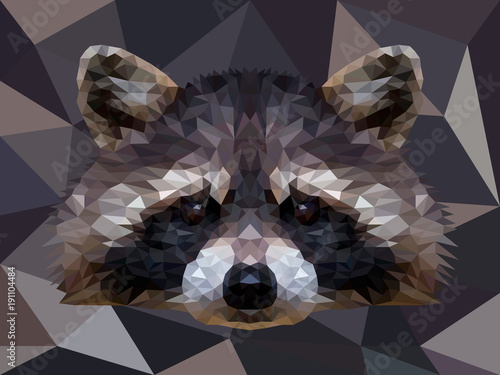 Vector polygonal raccoon isolated on white Fototapeta