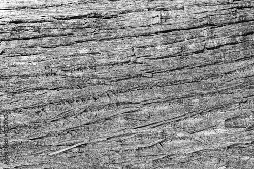 Aluminium Prints Firewood texture White wood floor texture pattern plank surface pastel painted wall background.