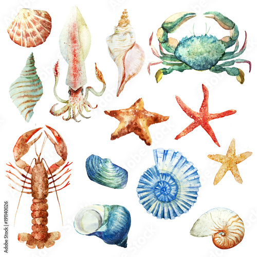 Fotomural  Watercolor underwater life set