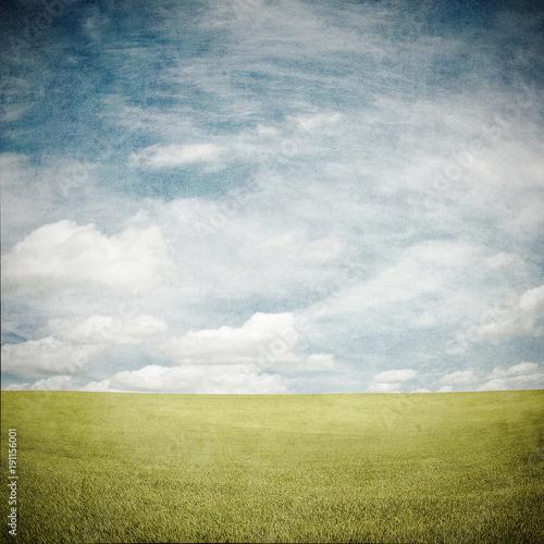 Foto op Plexiglas Weide, Moeras grunge image of a field
