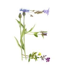 Floral Watercolor Letter E